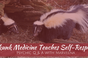 skunk medicine, self-respect, power of self respect, psychic q & a, Psychic Medium MarVeena Meek, Dallas Medium MarVeena Meek, MarVeena.com