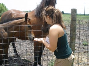 Horses and Healing Spa Day